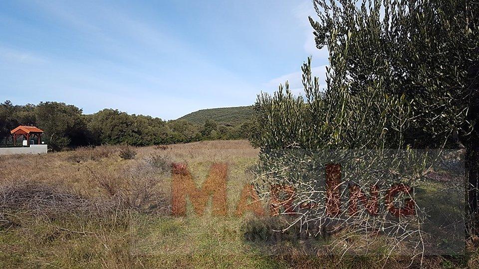 Land, 1350 m2, For Sale, Sveti Filip i Jakov - Turanj