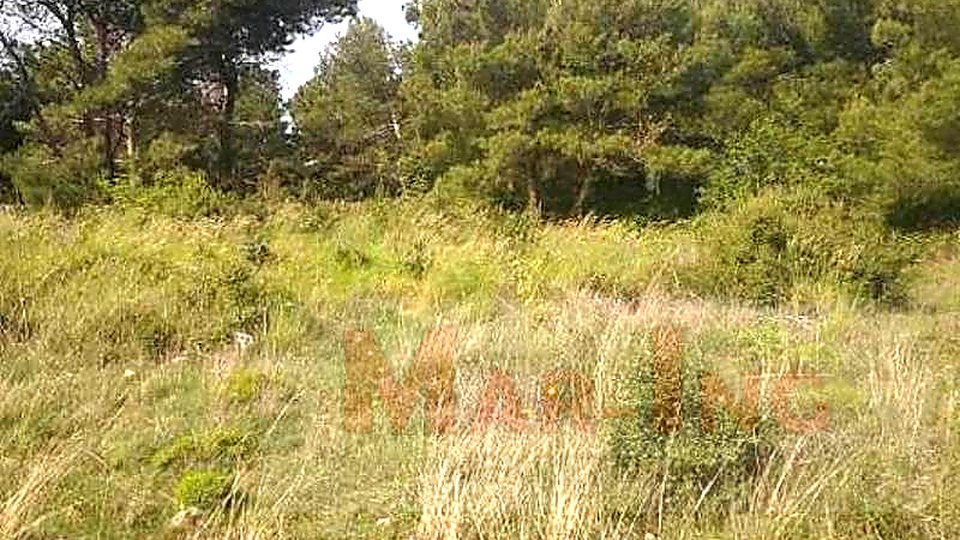 Land, 958 m2, For Sale, Vrsi